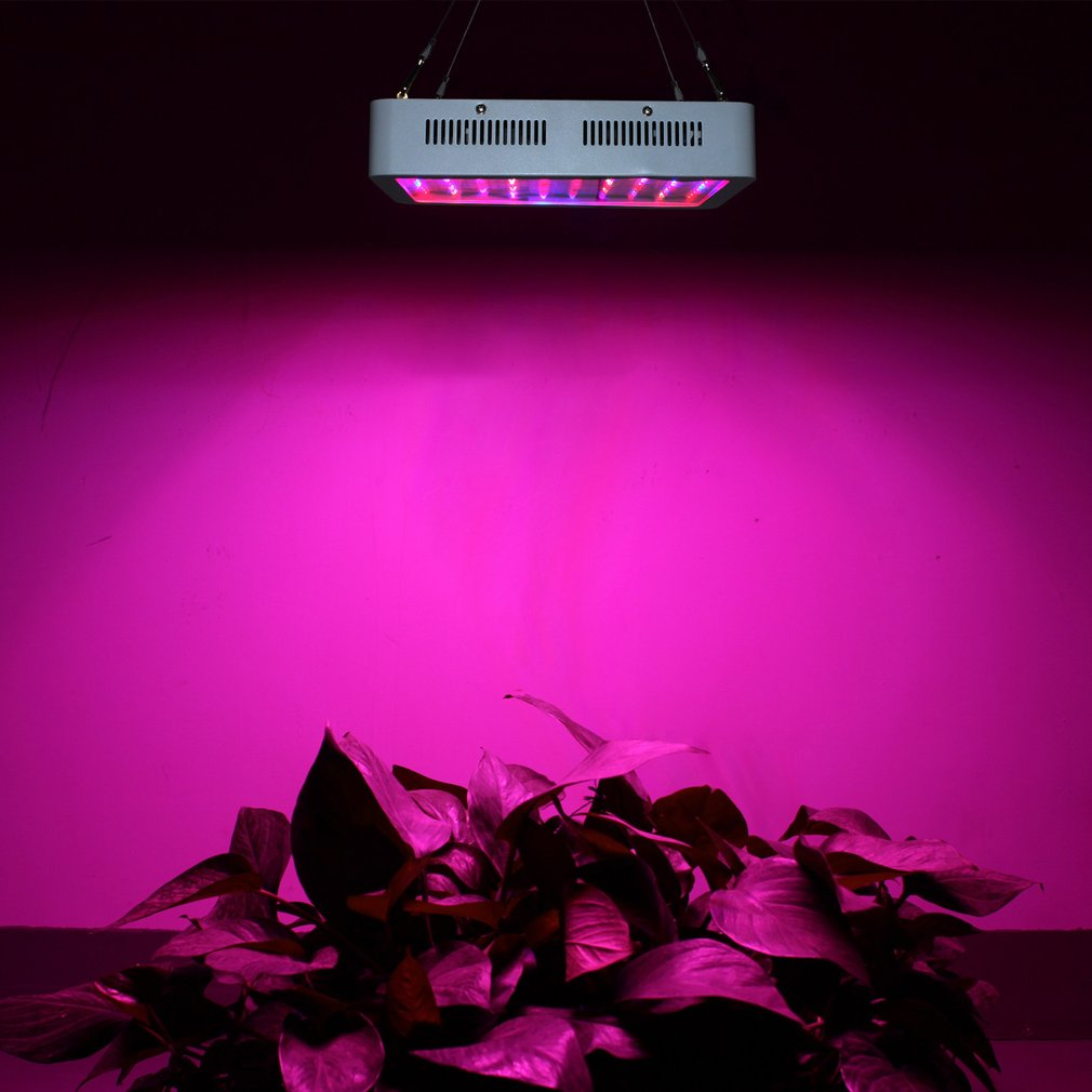 300W LED Plant Grow Light Planting Greenhouse Lamp For Hydroponic Indoor Plant