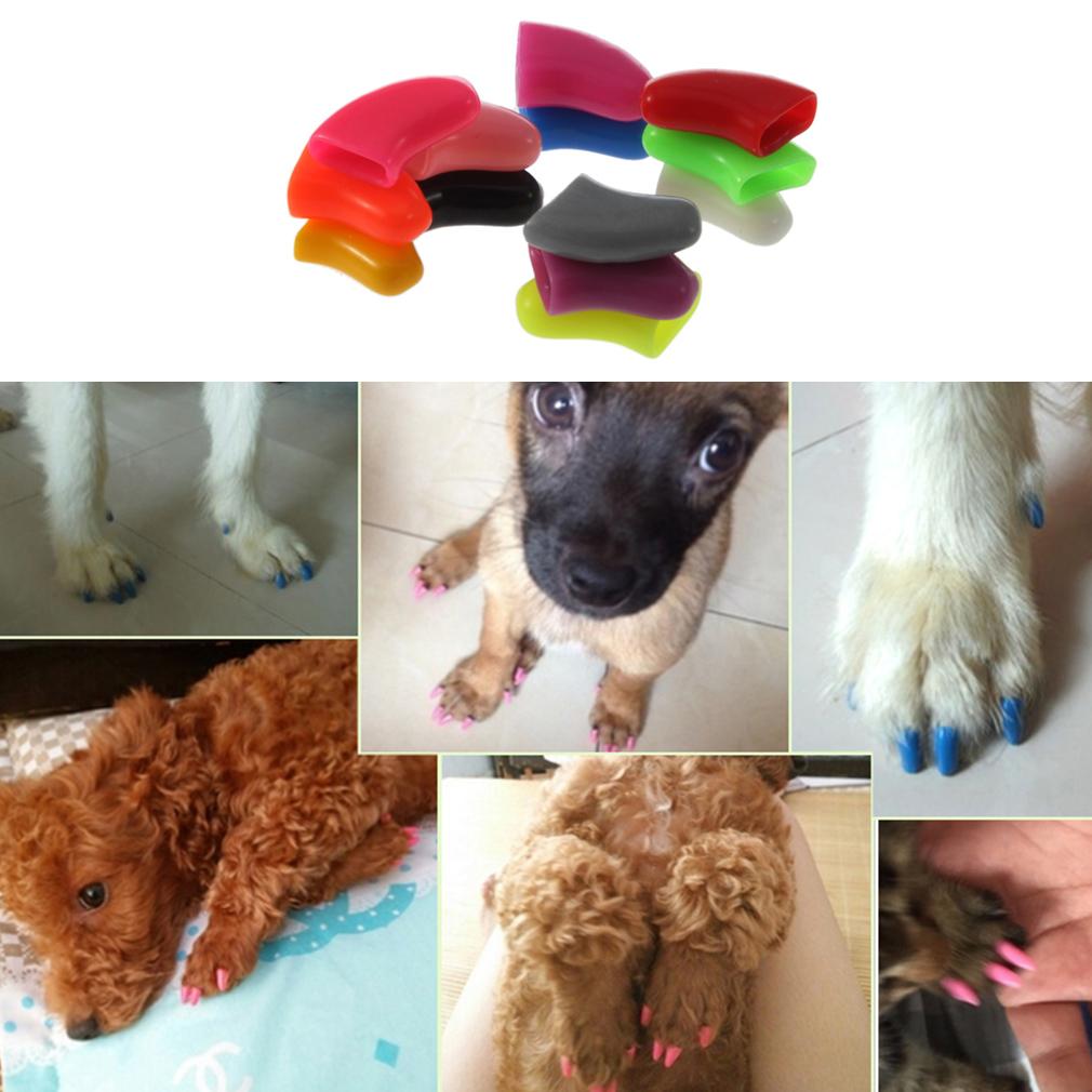 Fashion ! 20pcs Soft Dog Nail Caps  + Adhesive Glue