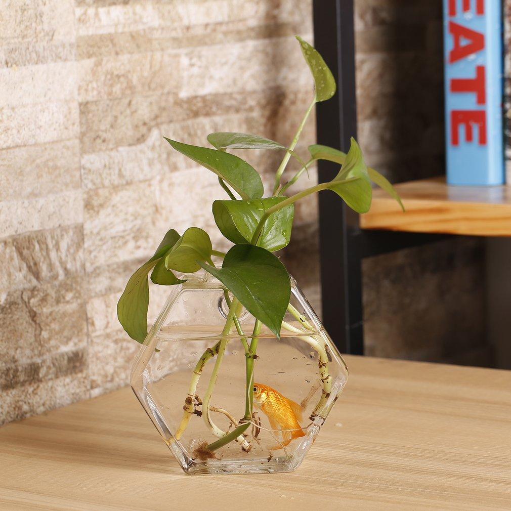 Hexagon Shaped Transparent Hanging Vase Plant Flower Glass Bottle Home Decor