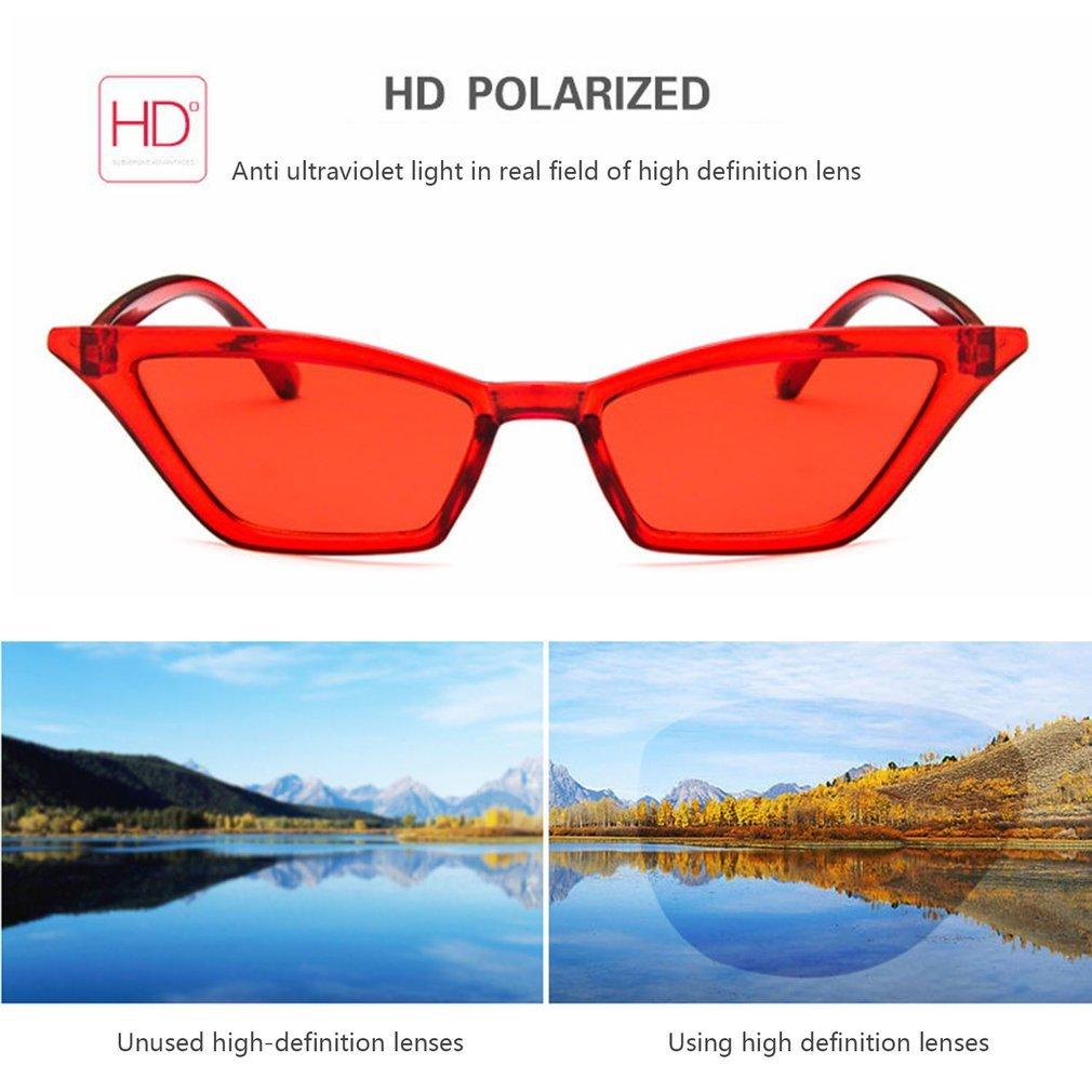 Popular Cat Eye Women Sunglasses Sun Glasses Ladies UV400 Eyewear Sunglasses PC Frame Resin Lens Travel Eyewear Glasses