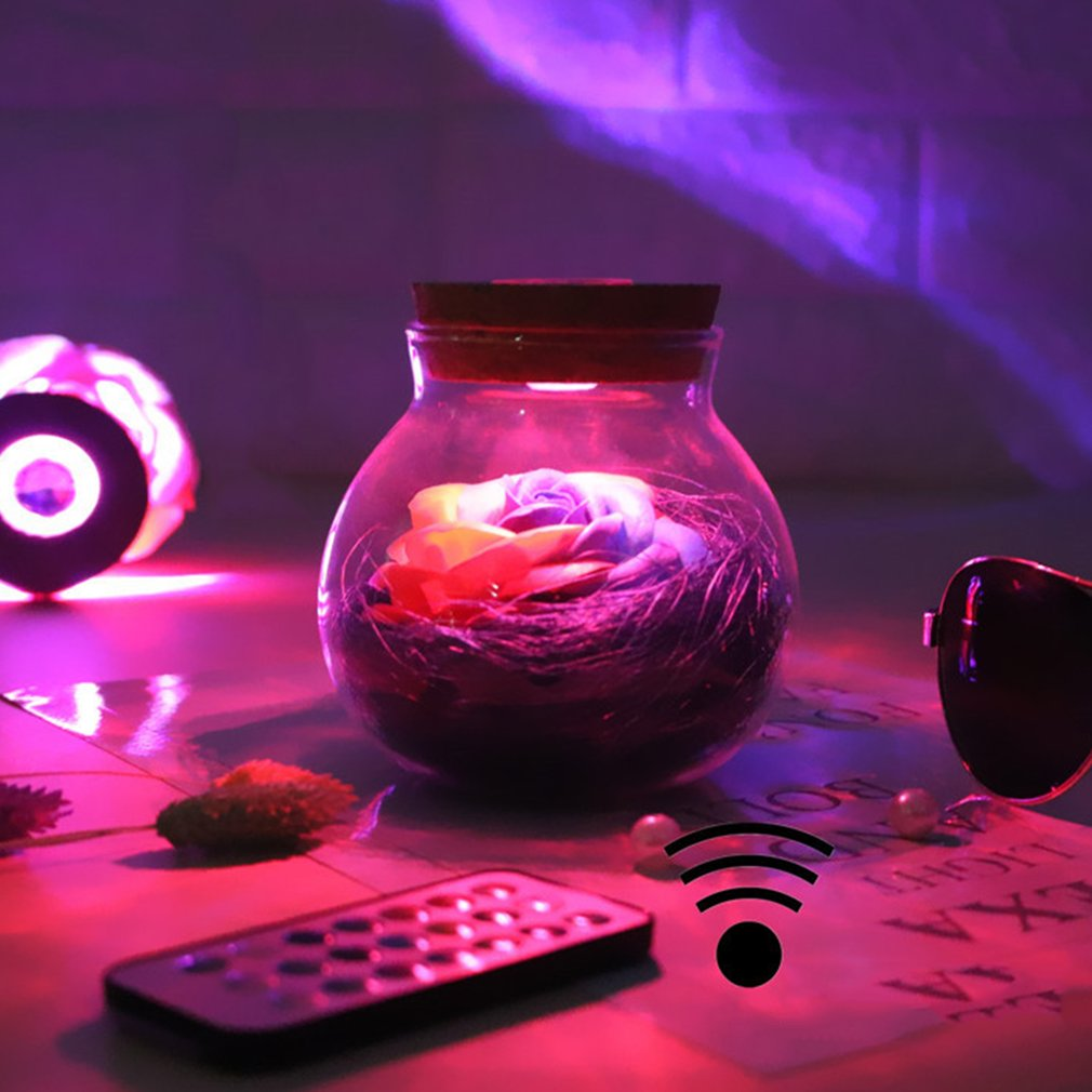LED RGB Dimmer Night Light Rose Flower Bottle Romantic With Remote Controller